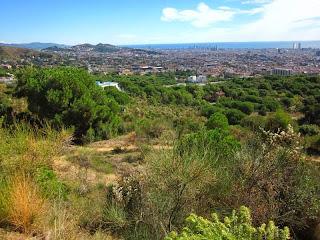 Barcelona from Carretera de les Aigues