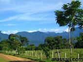 El paisaje de Barinas