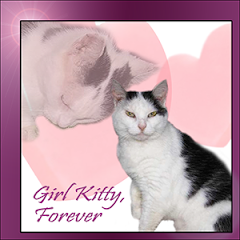 Girl Kitty  RIP
