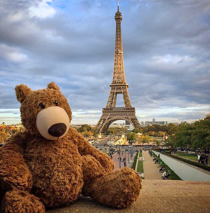 Paris, Latte the Bear