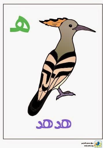ملصق تعليمي للأطفال لتعليم حروف الهجاء (حرف الهاء)