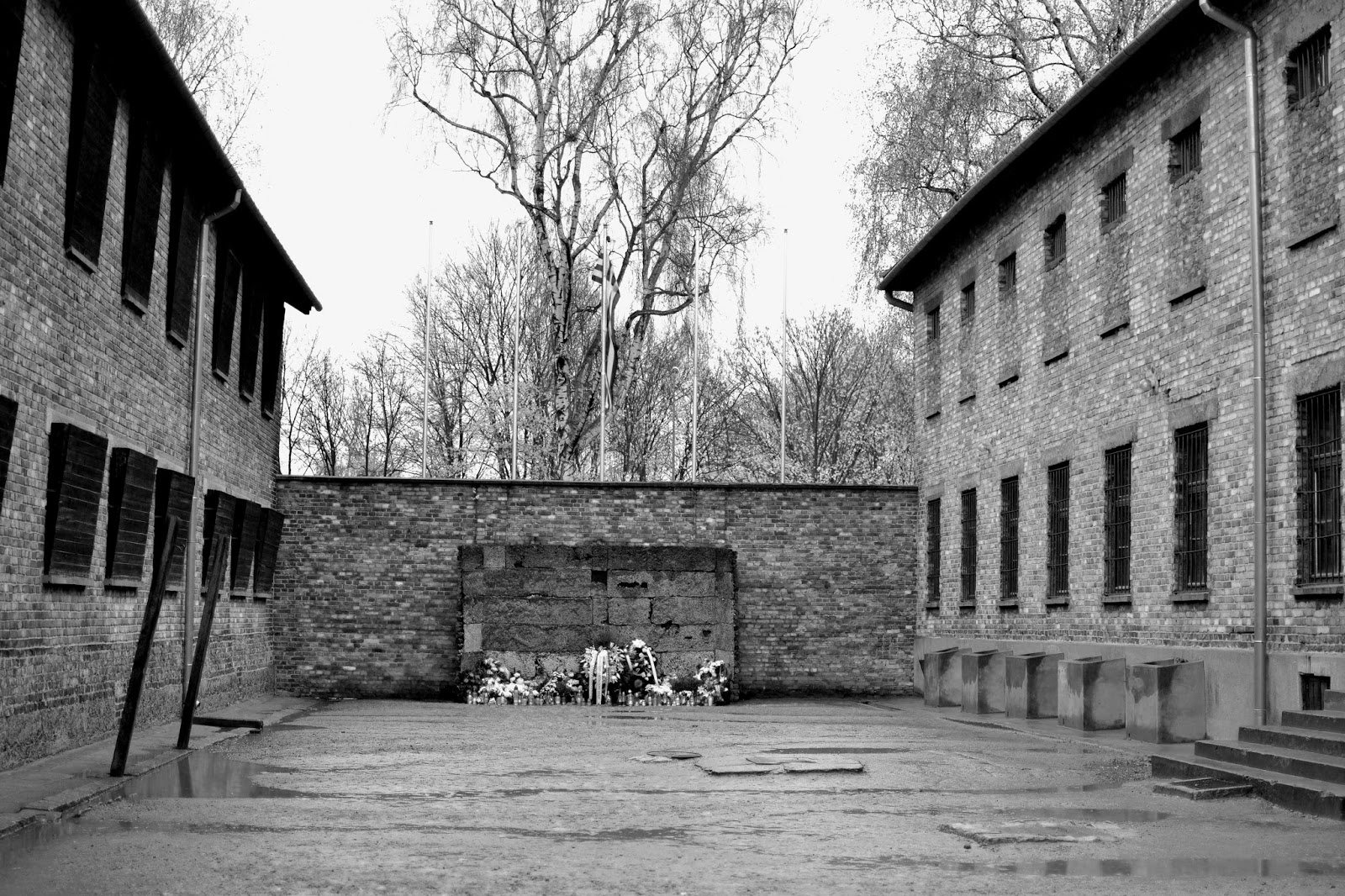 Death wall, block 11, Auschwitz, Birkenau, concentration camp, poland, nazi, death, death camp, train tracks, death gate, black and white, world war 2, ww2, hilter, germany, How to get to Auschwitz, Auschwitz hair, gas chamber, history, reflections on Auschwitz, experiences, travel, traveling, europe, bus to Auschwitz, train to Auschwitz, Auschwitz tours, Auschwitz guides, Auschwitz reports, photography, Halt Stouj!, barbed wire, fences, Auschwitz swimming pool, Auschwitz beauty, Arbeit macht frei, work makes you free,