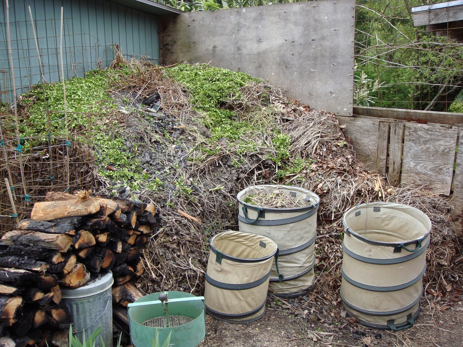 1 Year Old Compost Pile With Multiple Layers, Almost Full. Note the Mixture of Various Types of Plant Materials.  The Pop-up Bins in the Foreground are Extremely Useful, as is the Compost Mill in the Left Lower Corner of This Picture - These Items can be Purchased Through the Garden Suppliers listed on The Garden Oracle Site.