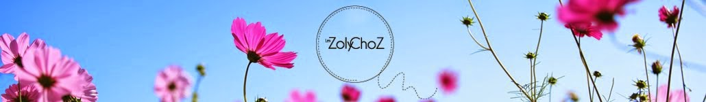 Les Zoly ChoZ