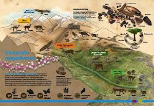 El Perú posee una gran megadiversidad