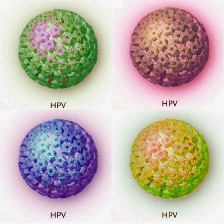 Virus hpv formas de contagio wroc awski informator - Hpv contagio bagno ...