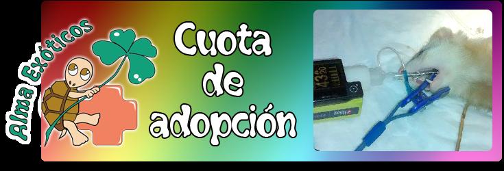 ¿Para que sirve la cuota de adopción?