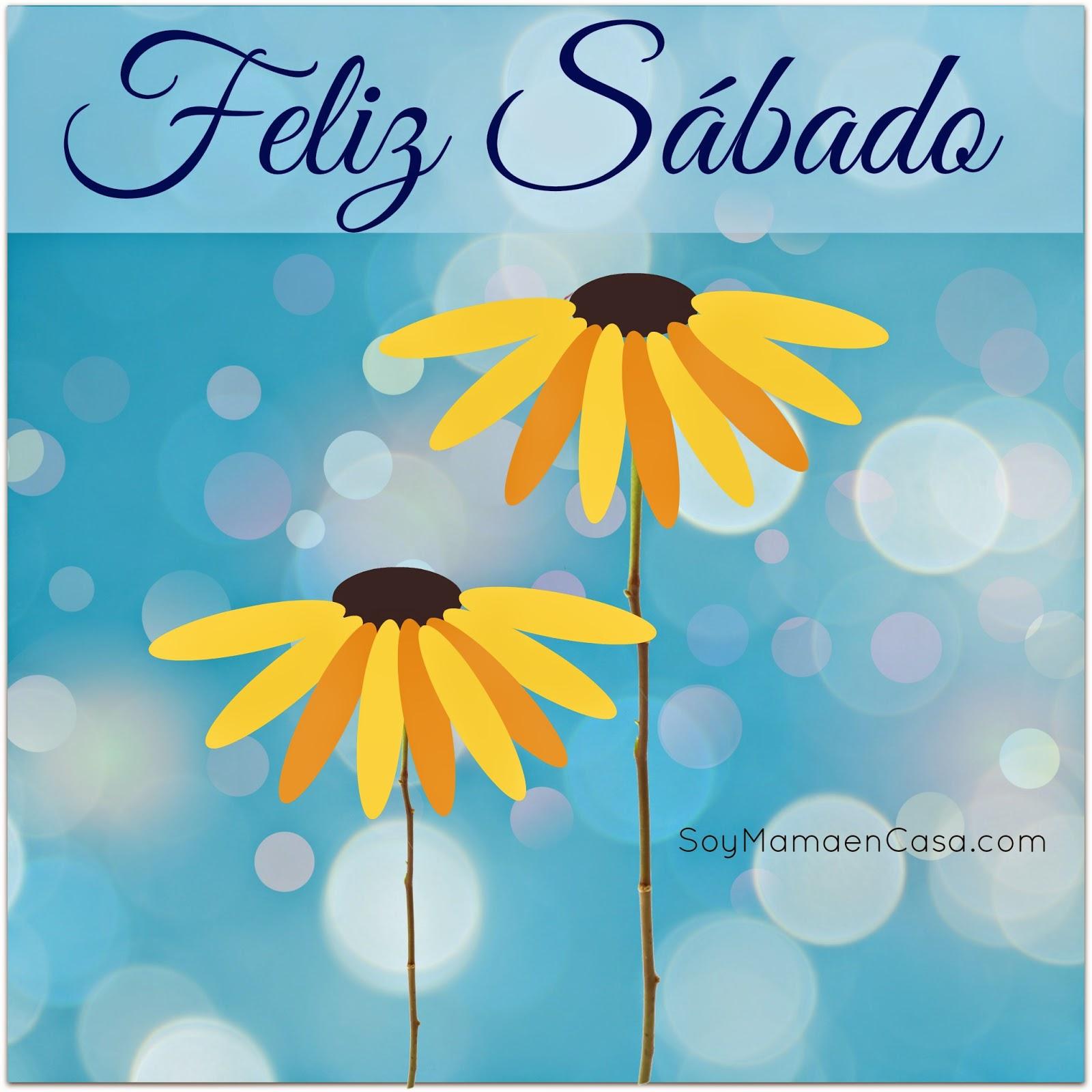 sábado, flores, margaritas