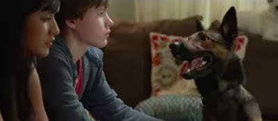 Sinopsis Film Max (Dog) 2015