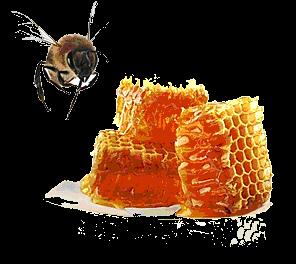 Bejiine s de la ruche ma peau - La ruche a miel ...
