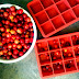 Cranberry Ice Cubes: a Simple, Colorful, and Festive Touch
