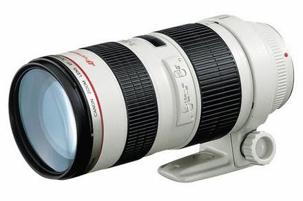 kamera för naturfotografering