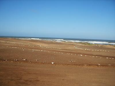 http://www.namibiareservations.com/terracebaye.html