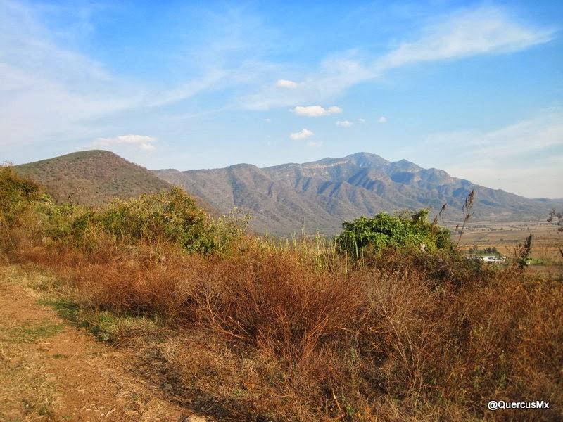Cerro Viejo desde una brecha cerca de El Molino