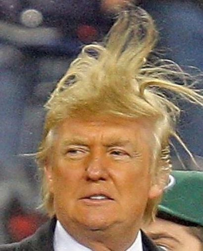 [Image: donald-trump-hair.jpg]
