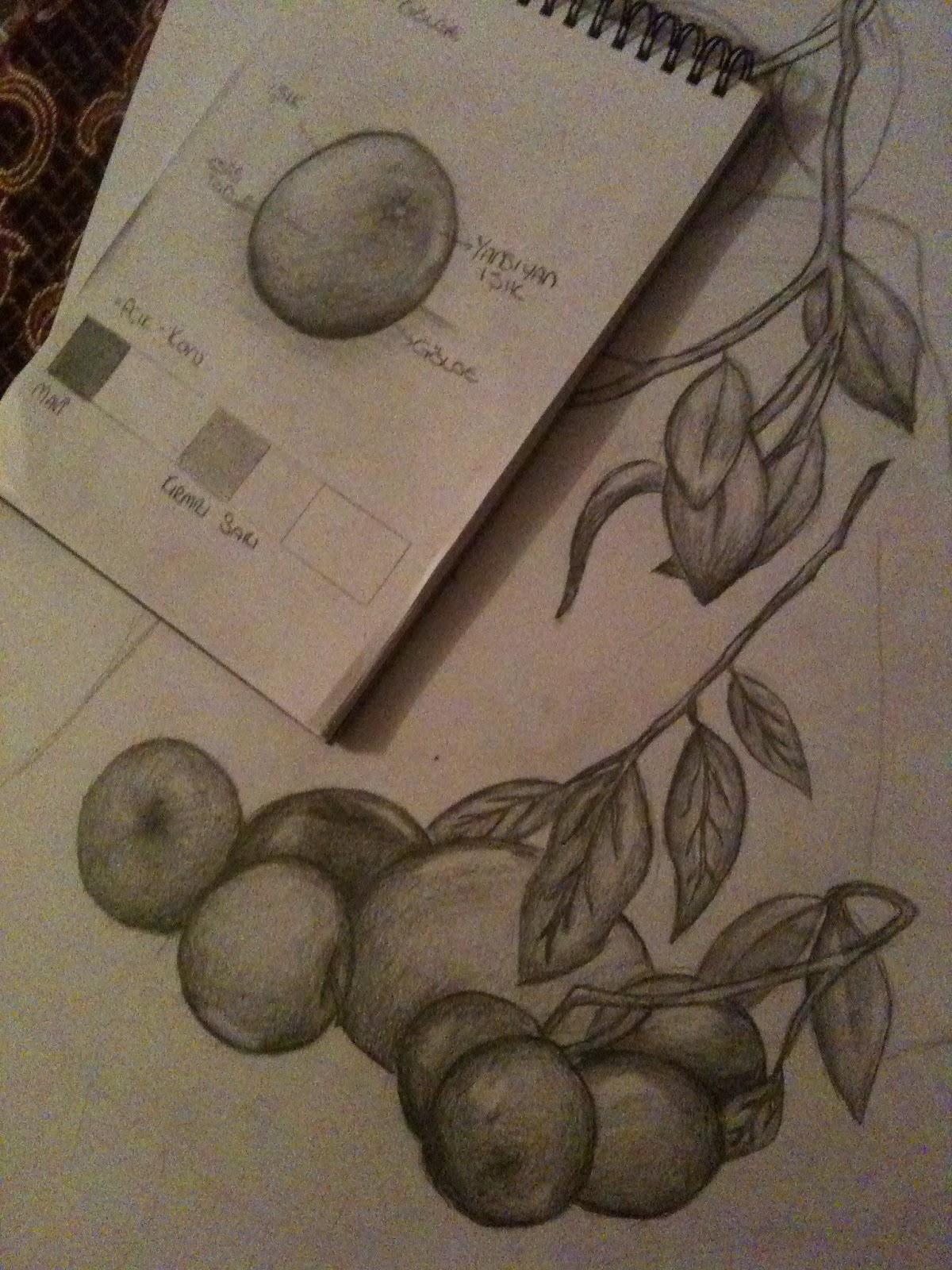 Hayal Gücüm Karakalem Meyve çalışması