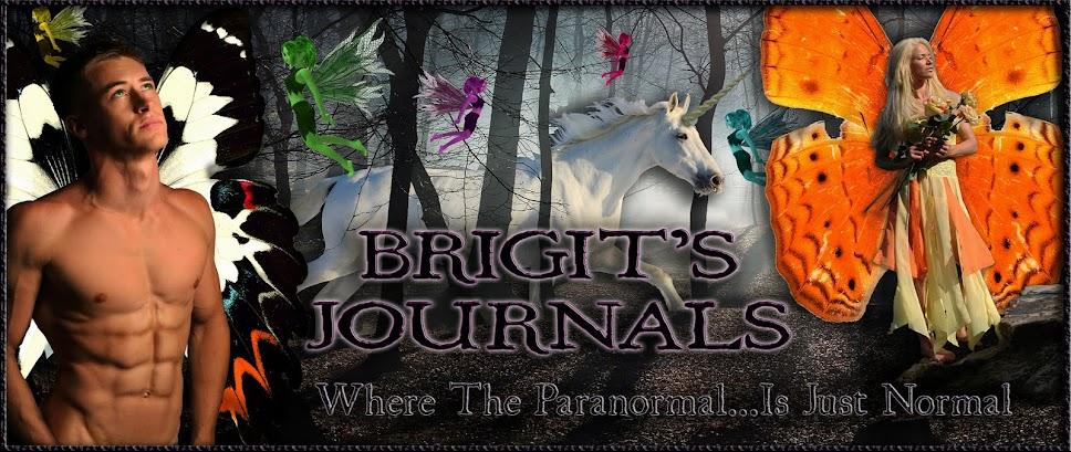 Brigit's Journals