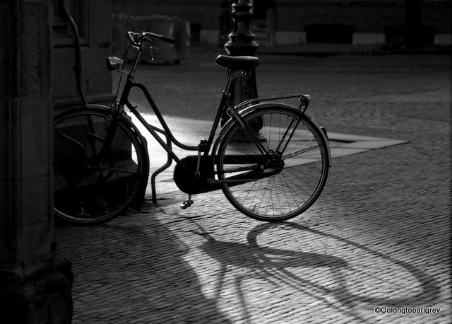 Bicycle, Utrecht, The Netherlands
