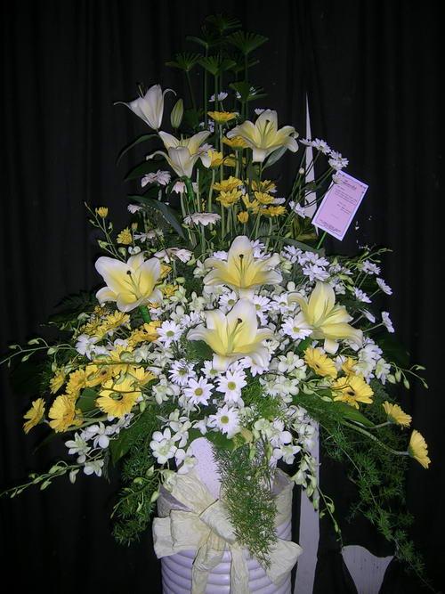 Toko Bunga Zamia Florist