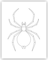spider free hand embroidery pattern