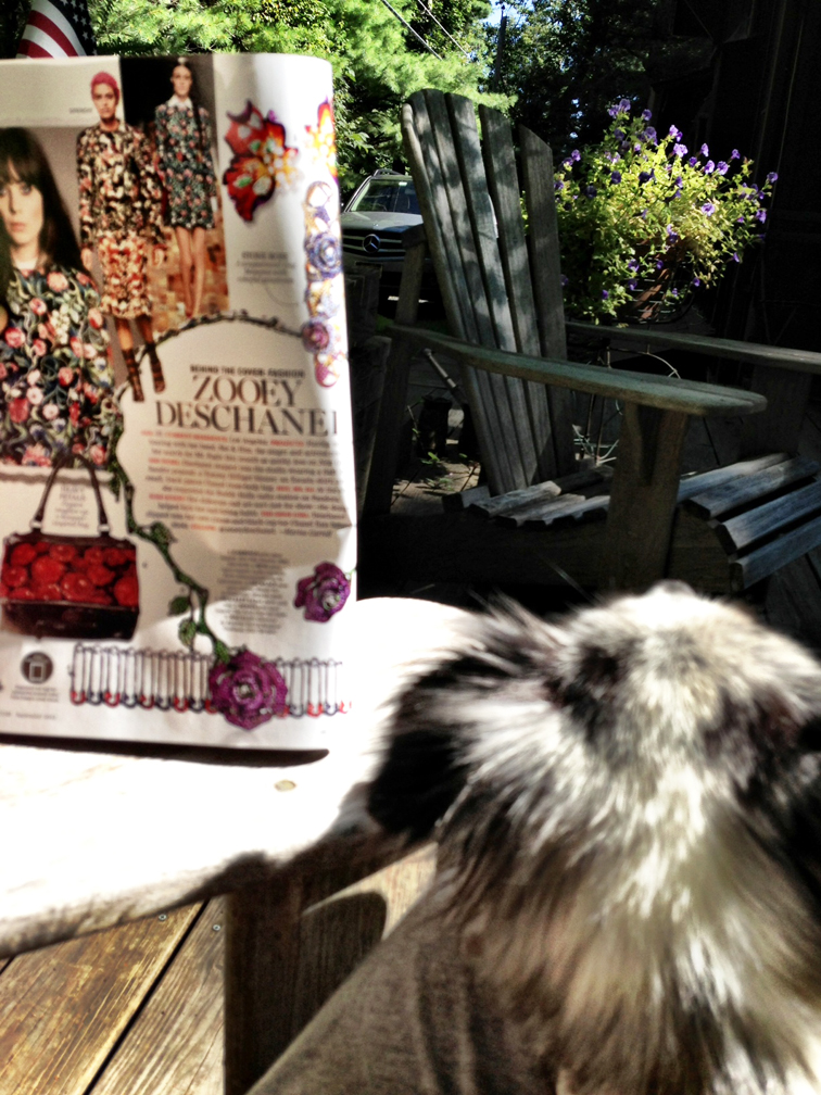 summer cottage morning coffee marie claire september issue