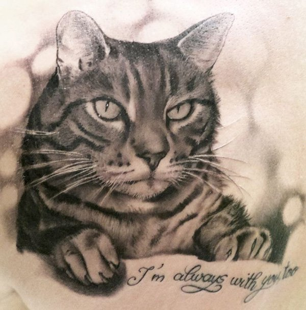 Tattoos Os Tabby Cats Pictures