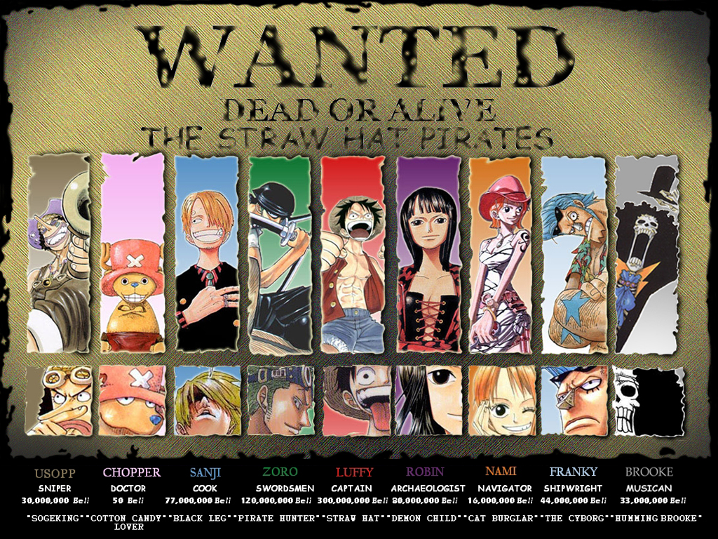 NEW_ONE_PIECE.jpg