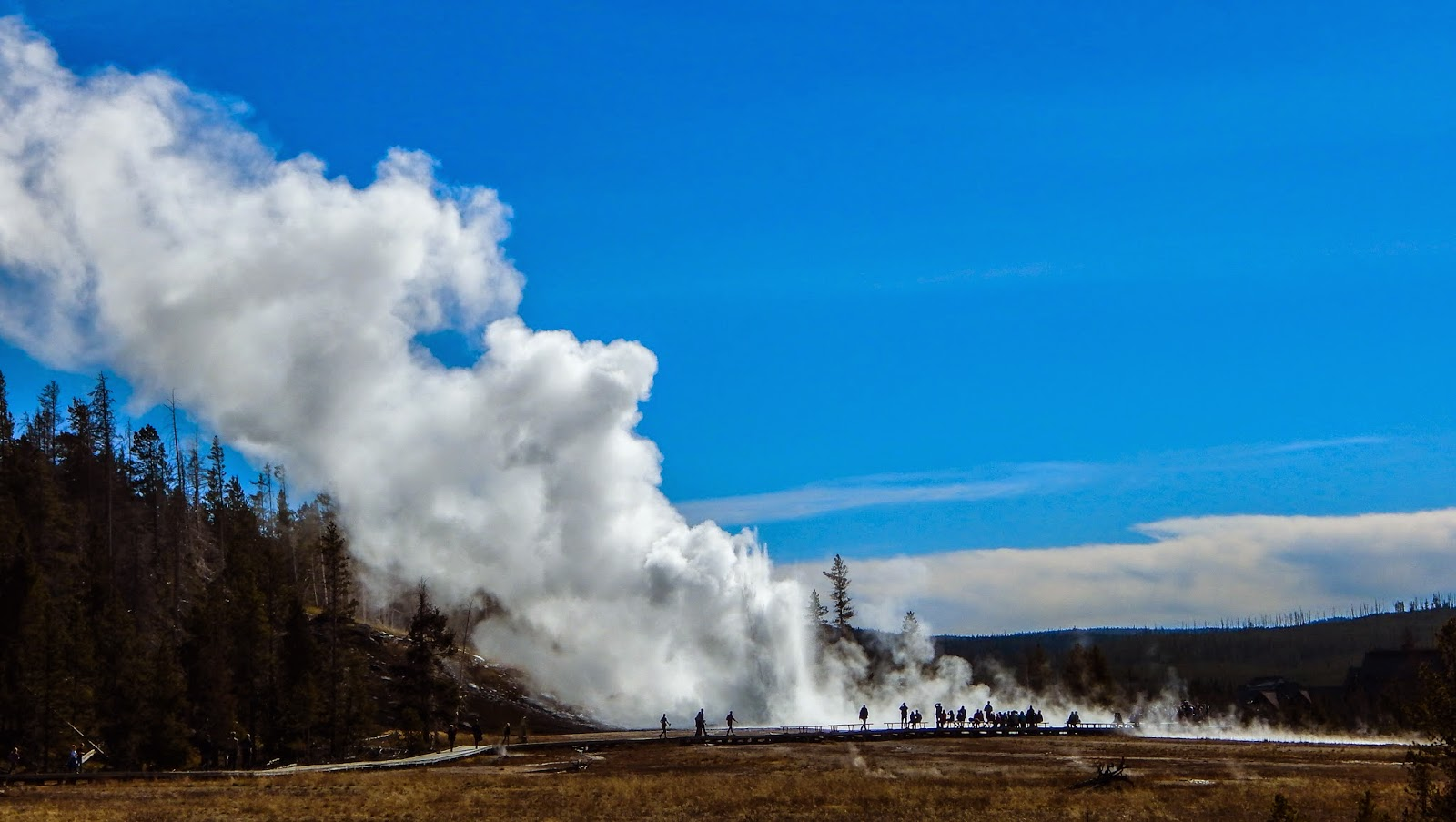 Name watching the geyser