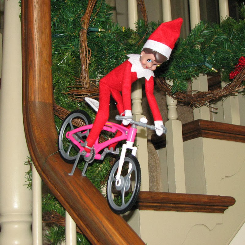 Amy S Daily Dose What Is The Elf On The Shelf And Other