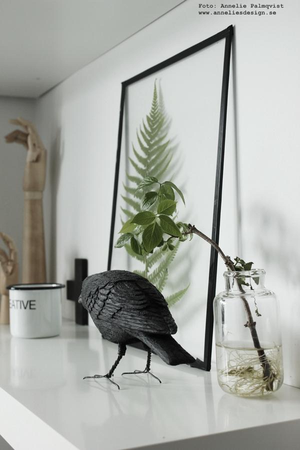 korp, diy tavla av glaset från en ram med växter i, handsnidad fågel, webbutik, webbutiker, webshop, korpar, fåglar, svartvitt, svart och vitt, hylla, tillverka själv