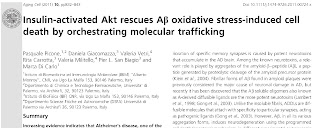 Insulin activated Akt rescues Aβ oxidative stress-induced cell death by orchestrating molecular trafficking