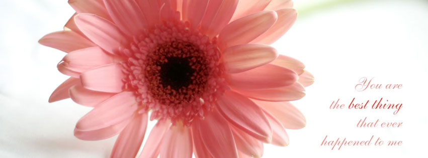 Fb Love Cover Photos Hd : ... cover - Facebook Cover Photos, FB Cover Pics Facebook cover HD