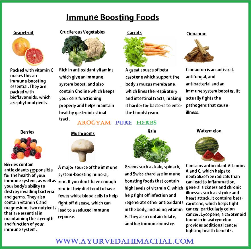 Immunity Boosting Food And Herbs Ayurvedic Herbal