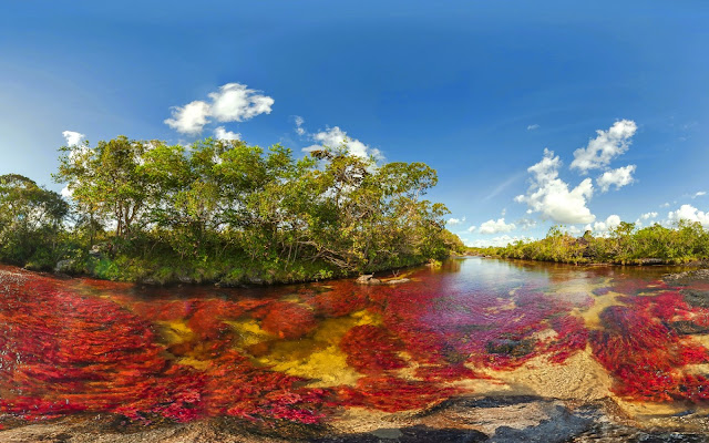 Rio Caño Cristales paisajes naturales de Colombia