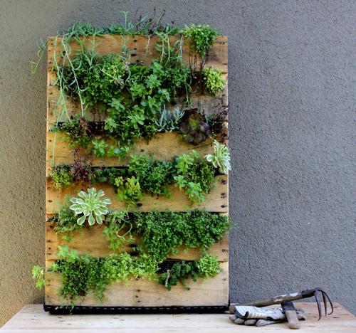 Diy : un mur végétal en bois de palette!