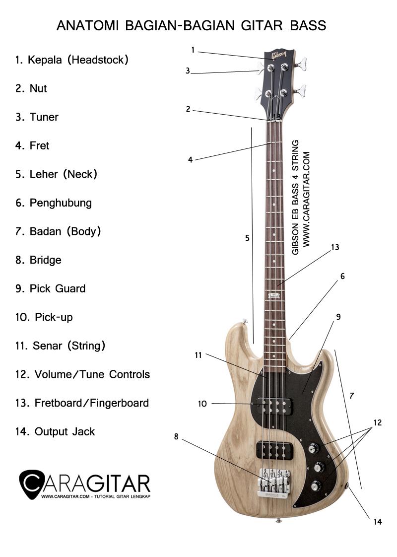 gambar bagian gitar bass