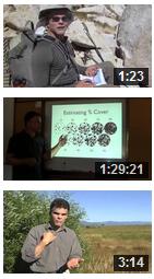 Nature Journaling Videos
