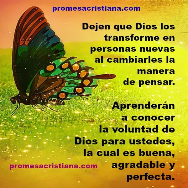 Frases de promesas cristianas, Dios transforma, conocer voluntad de Dios agradable perfecta. Mensaje cristiano.