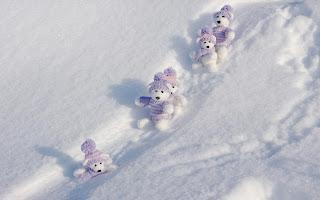 Winter Teddy Bear HD Wallpaper