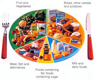 Diet plan to help lose weight fast xls