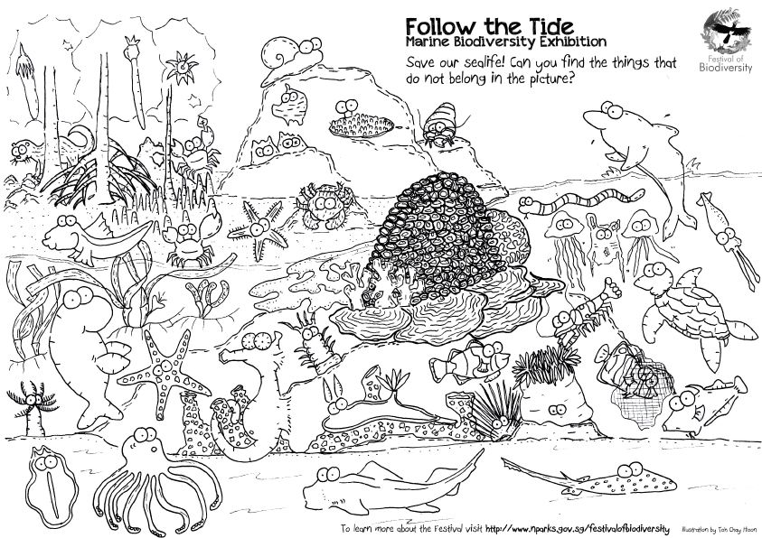 Singapore Has Amazing Marine Life Captured So Well By Toh Chay Hoon On Her Awesome Colouring Sheet