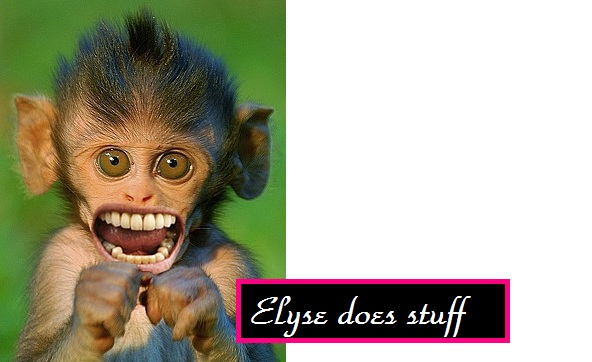 Elyse does stuff