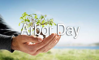 Arbor Day picture of hand holding a tree