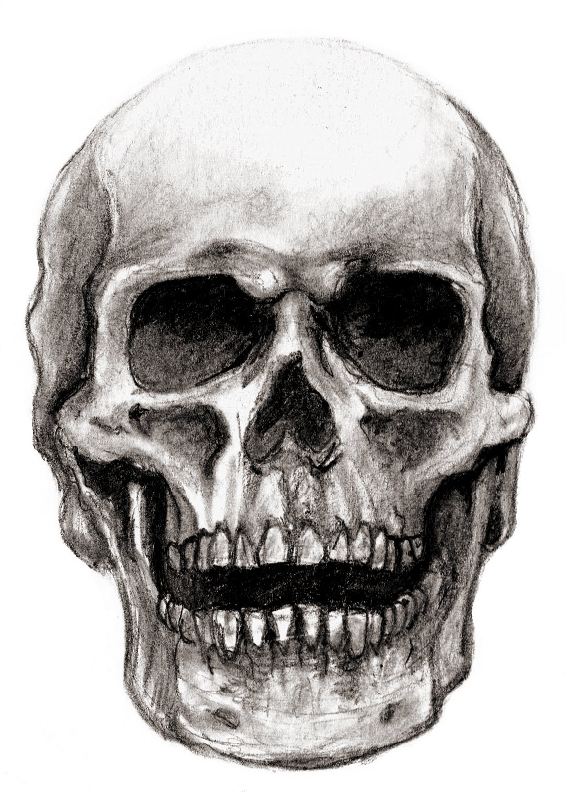 Cool Skull Sketches