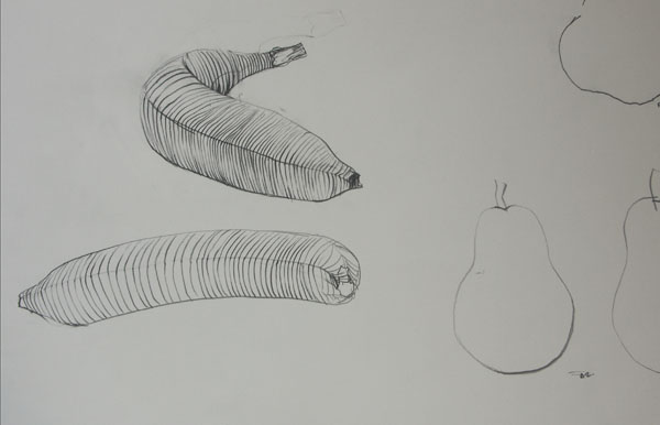 Contour Line Drawing Pdf : Basic drawing bananas pears