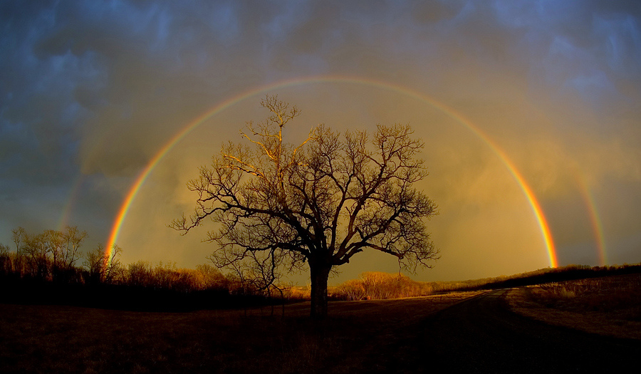 Why Does A Rainbow Form After the Rain: Double rainbows, smi ...