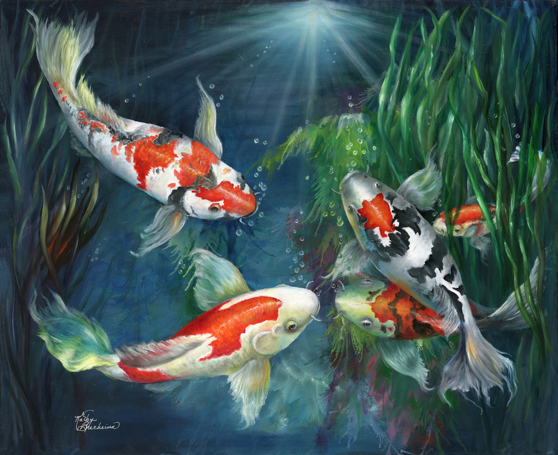 Mea fine art blog for Koi fish in pool