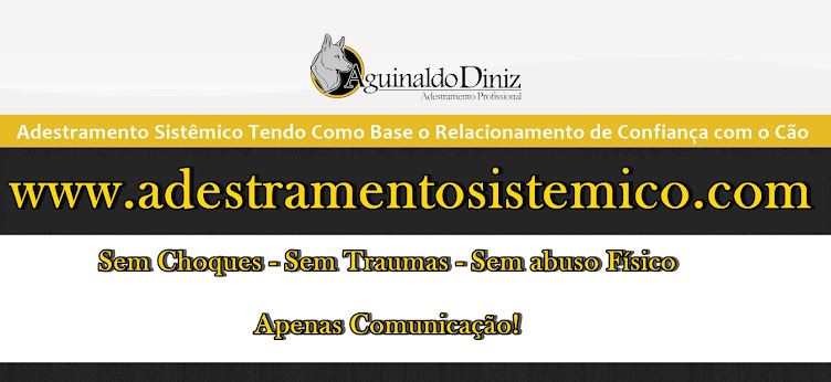 Adestramento em Curitiba com Aguinaldo Diniz