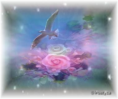 Flori cu aripi!