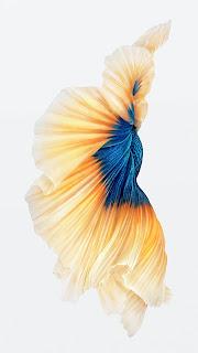 Bộ hình nền iPhone 6S